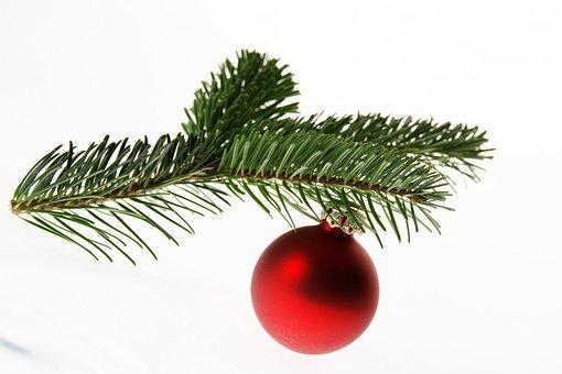 Fir, Nordmann Fir, Christmas Tree, Christmas, Ball