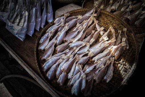 Fish, Seafood, Food, Market, Invertebrate, Daytime