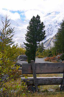 Trail, Bank, Nature, Bench, Rest, Hiking, Wood, Seat