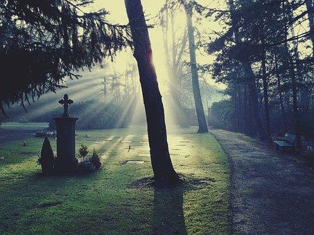 Cemetery, Light, Glow, Sun, Sunshine, Bill, Tombstone