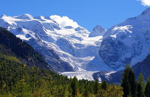 Hiking, Autumn, Away, Nature, Landscape, Trees, Alpine