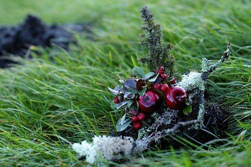 Christmas Decoration, Christmas, Holiday, Celebrations
