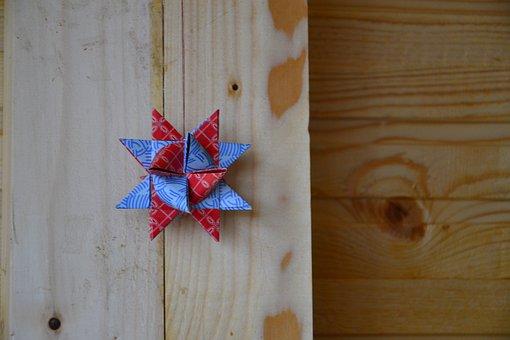 Froebelstern, Christmas, Deco, Star, Poinsettia