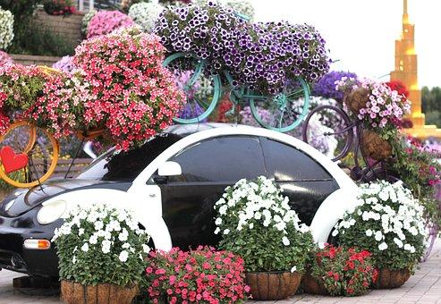 Dubai Miracle Garden, Garden, Spring, Design, Landscape