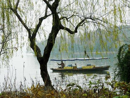 Lake, Lakeside, Scenery, Beautiful, Travel, Tourist