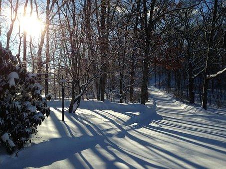 Nj, Winter, Shadows, Snow, Sunlight, Landscape, Sky
