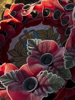 Wreath, Poppy, War, Remembrance, Frost, British Legion