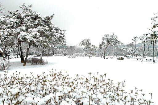 Hanam City, Hanam City Hall, Winter Landscapes