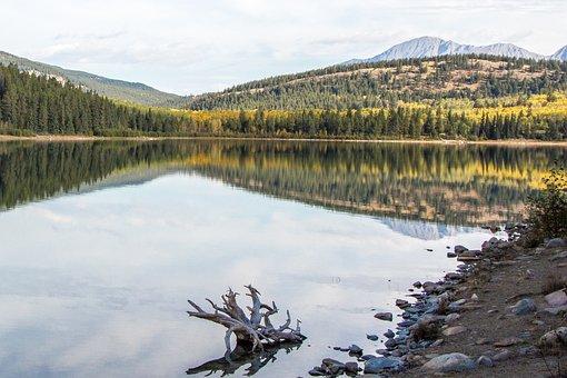 Patricia Lake, Lake, Jasper, Canada, Park, Alberta