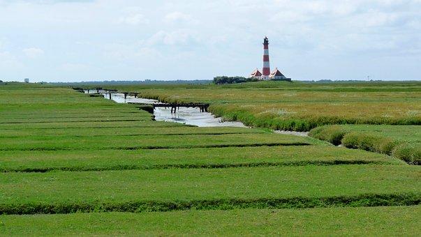 Lighthouse, North Sea, Salt Meadow, Wadden Sea, Coast