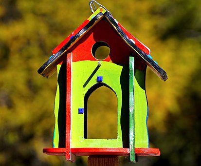 Bird Feeder, Colorful, Feeding, Wood, Colored, Color