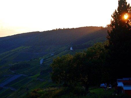 Autumn, Sunset, Hills, Forests, Vineyards, Dim, Fields