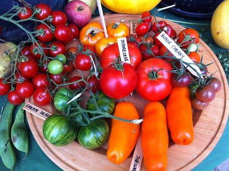 Vegetables, Castle Hex, Tomatoes