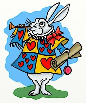 Animal, Rabbit, Rodent, Cartoon, Announce, Announcement