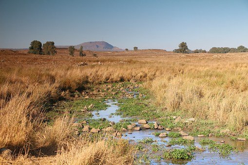 Golan Heights, Field And Stream, Israel, Landscape