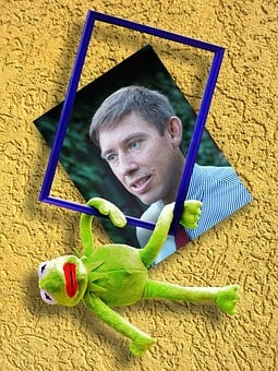 Out Of The Ordinary, Kermit, Frog, Image, Man, Funny