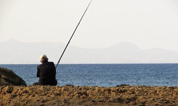 Fishing, Fisherman, Hobby, Leisure, Sport, Recreation