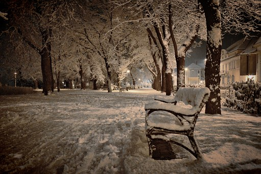 Snow, Winter, January, In The Evening, Park