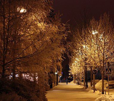 Oulu, Finland, Night, Evening, Street, Trees, Person