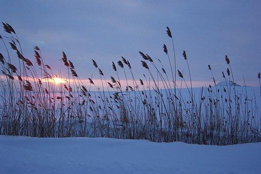 Winter, Snow, Sunset, Abendstimmung