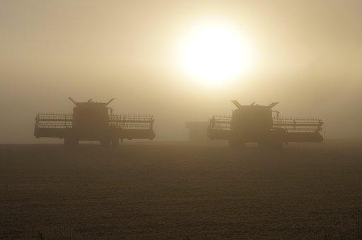 Combine, Harvest, Agriculture, Harvesting, Agricultural