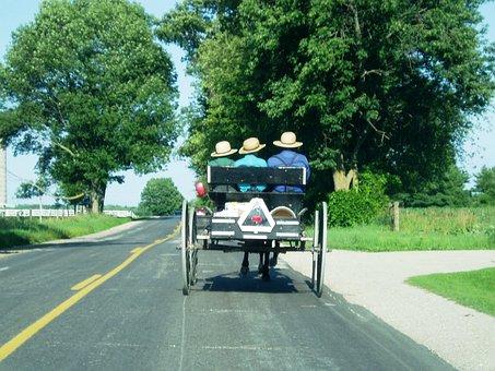 Amish, Carriage, Farm, Country, Farmland, Countryside