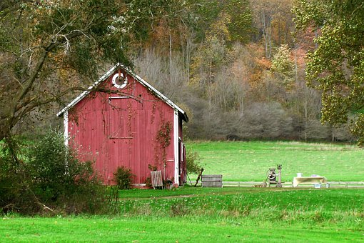 Barn, Red, Red Paint, Amish, Countryside, Green Grass