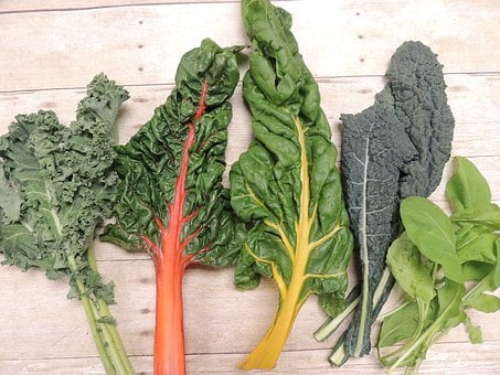 Kale, Swiss Chard, Arugula, Vegetable, Leafy Greens