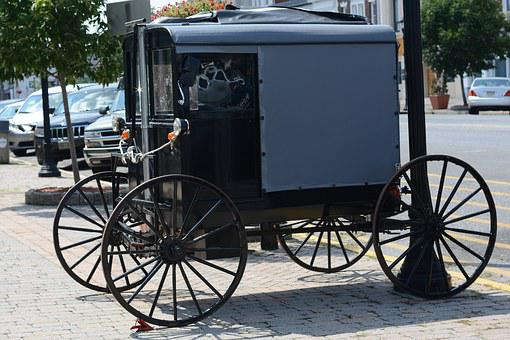 Amish, Carriage, Horse, Buggy, Rural, Transportation