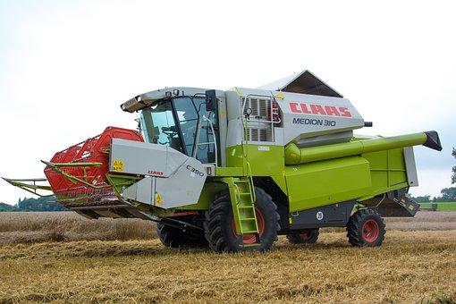 Harvest, Combine Harvester, Cereals, Harvester