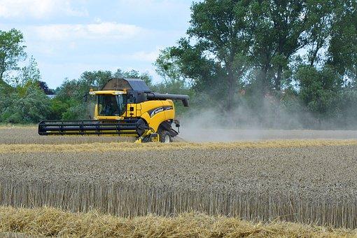 Combine Harvester, Harvest, Barley Field, Agriculture