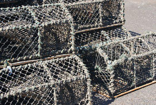 Fishing, Pots, Lobster, Crab, Industry, Trap, Harbor