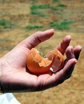 Cracked Egg, Broken, Wasted, Food