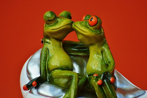 Frogs, Lovers, Funny, Together, Smooch, Kiss, Pair