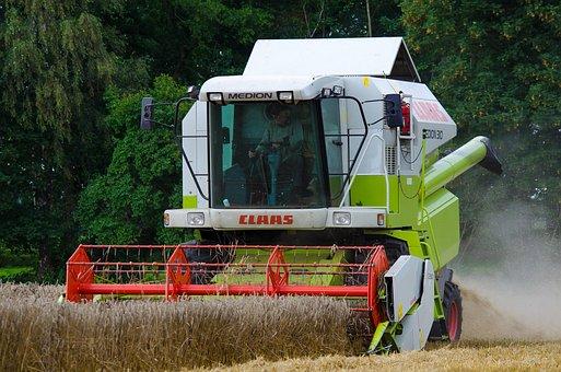 Harvest, Combine Harvester, Cornfield, Grain, Field