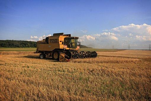 Harvest, Harvester, Blue Sky, Agriculture, Farming