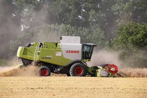 Harvest, Claas, Combine Harvester, Wheat, Cornfield