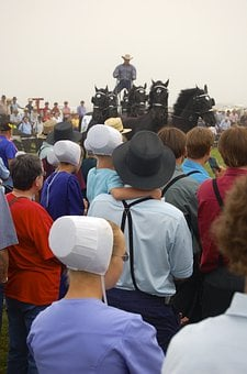 Amish, Persons, Man, Women, People, Amish Gathering