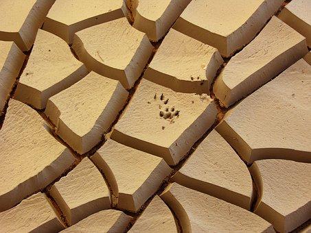 Cracked Earth, Dry, Pedro Nunes