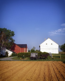 Pennsylvania, Lancaster Country, Amish, Buggy, Horse