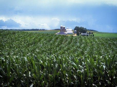 Pennsylvania, Landscape, Scenic, Amish Farm, Rural