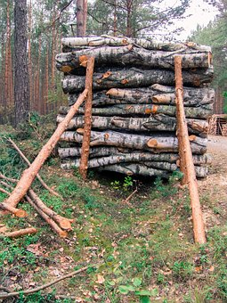 Wood, Slice, Stack, Supported, Pine, Cut, Tree