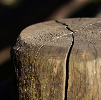 Stump, Logs, Stake, Wooden, Wood, Cracks In Wood