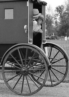 Amish, Indiana, Buggy, Farmland, Transportation