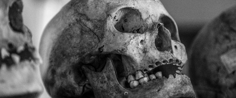 Skull, Old, Human Skull, Black And White, Vintage