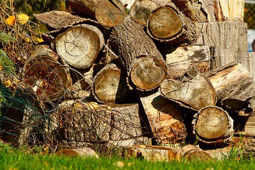 Wood, Pile, Woodpile, Firewood, Logs, Stacked, Stack