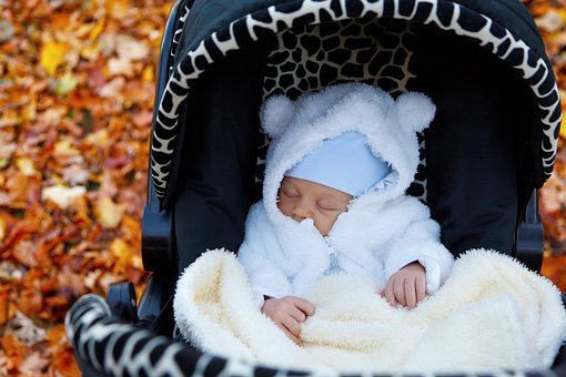 Autumn, Baby, Buggy, Carriage, Child, Fall, Infant, Kid