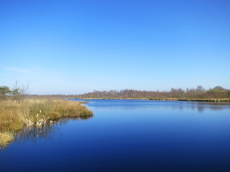 De Grote Peel, Nature Reserve, Noord Limburg