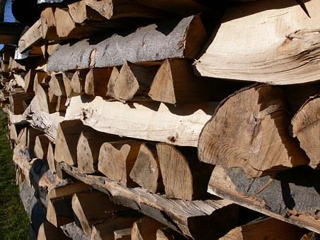 Wood, Holzstapel, Firewood, Growing Stock, Brown, Tree