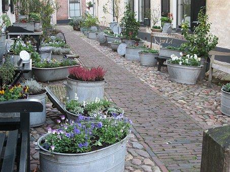Rose, Historical, Village, Street, Historical Center